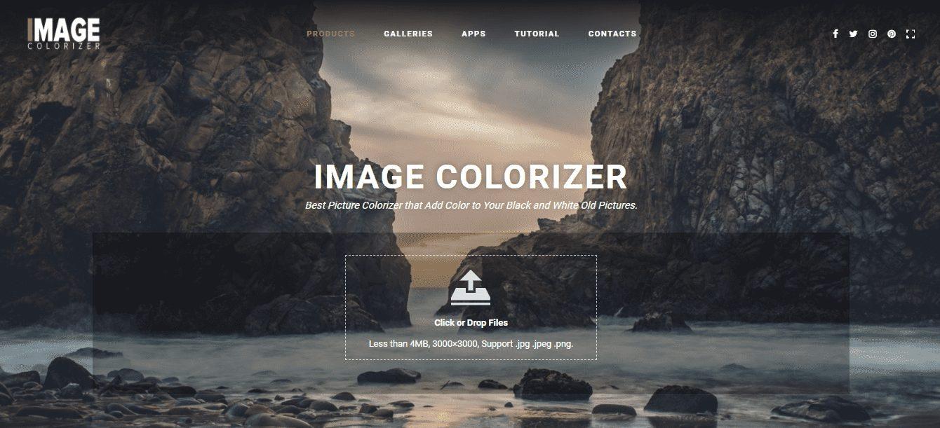 Online Image Colorizer