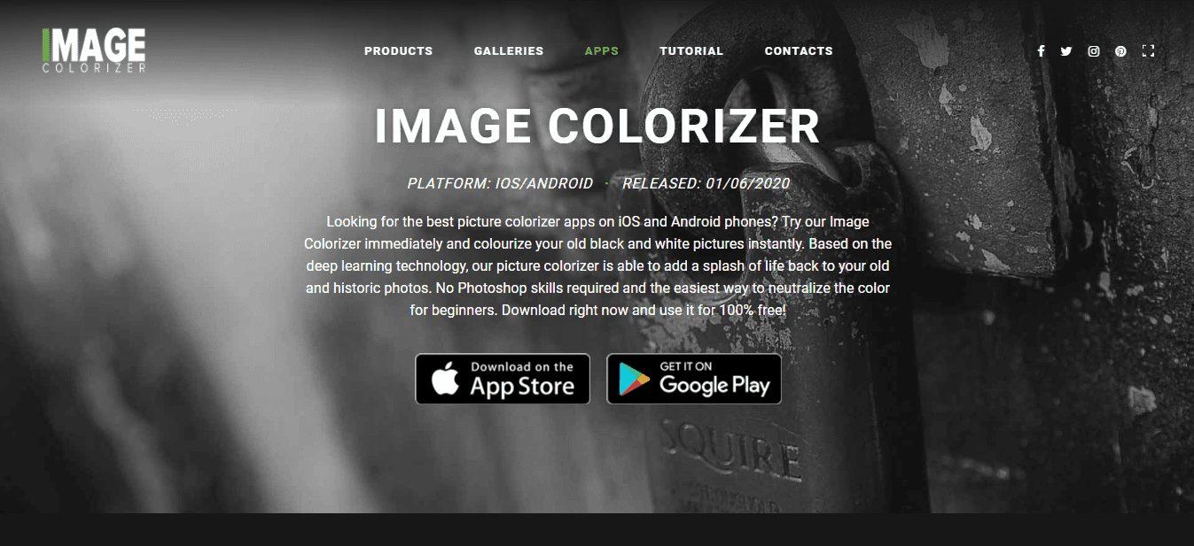 Picture Colorizer app