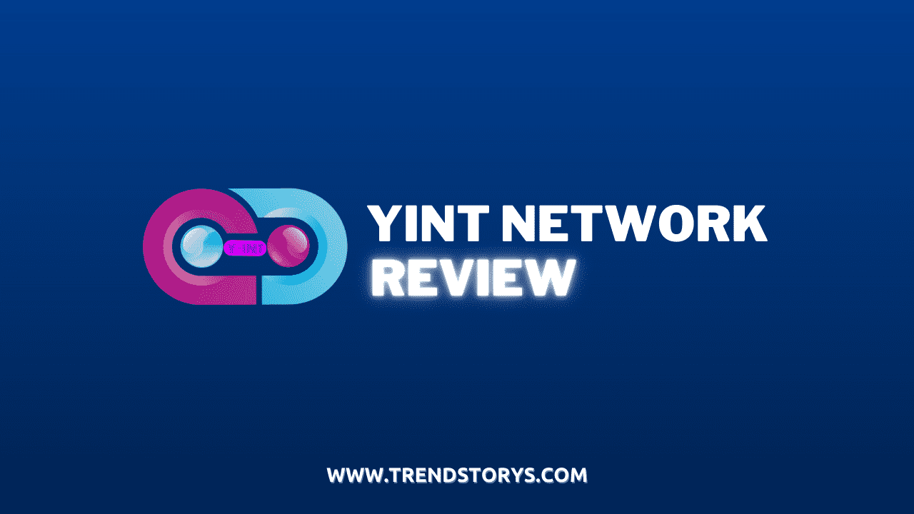 Yint Network Review